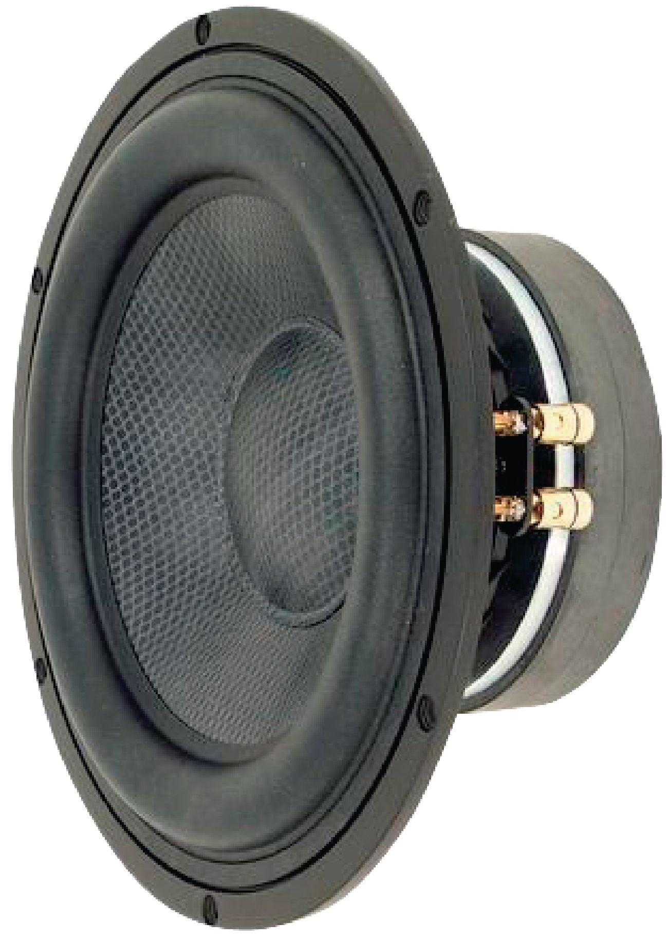 Vs Tiw250xs Visaton Woofer 25 Cm 10 8 Ohm Electronic
